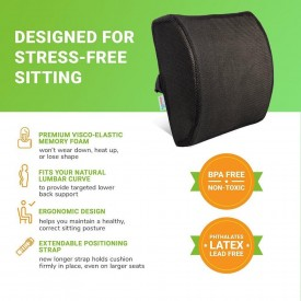 cushion for back pain