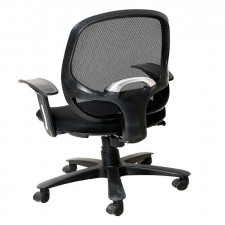 Ergonomic Back Rest Chair