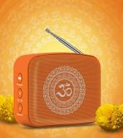 Carvaan Mini Bhakti - Saregama